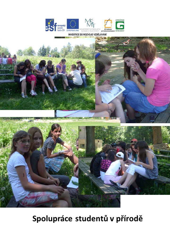 Spolupráce studentů v přírodě