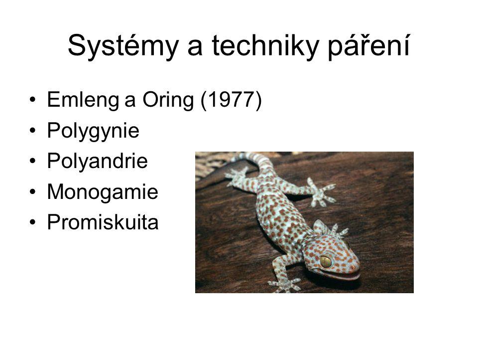 Systémy a techniky páření Emleng a Oring (1977) Polygynie Polyandrie Monogamie Promiskuita
