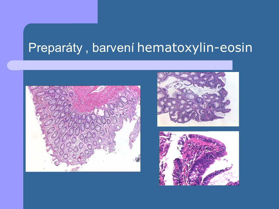 Preparáty, barvení hematoxylin-eosin
