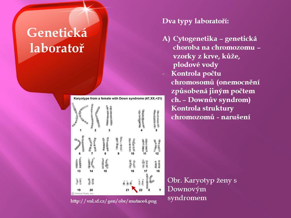 Genetická laboratoř Dva typy laboratoří: A)Cytogenetika – genetická choroba na chromozomu – vzorky z krve, kůže, plodové vody - Kontrola počtu chromos