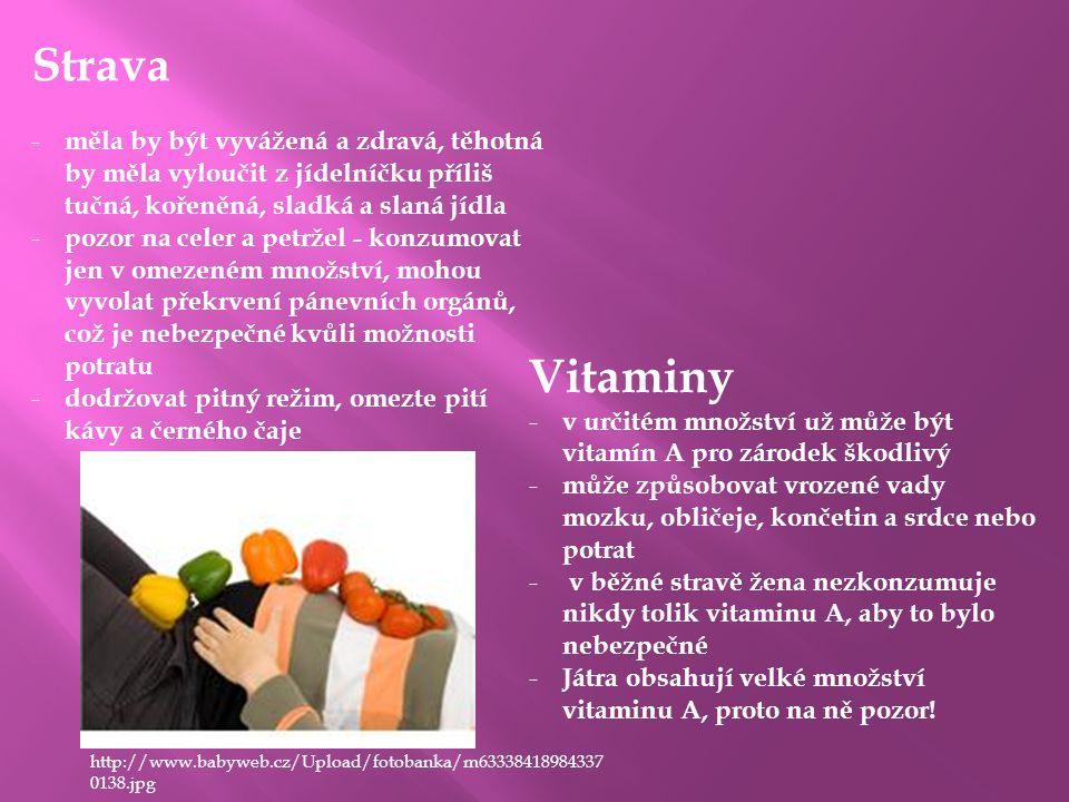 Strava - měla by být vyvážená a zdravá, těhotná by měla vyloučit z jídelníčku příliš tučná, kořeněná, sladká a slaná jídla - pozor na celer a petržel