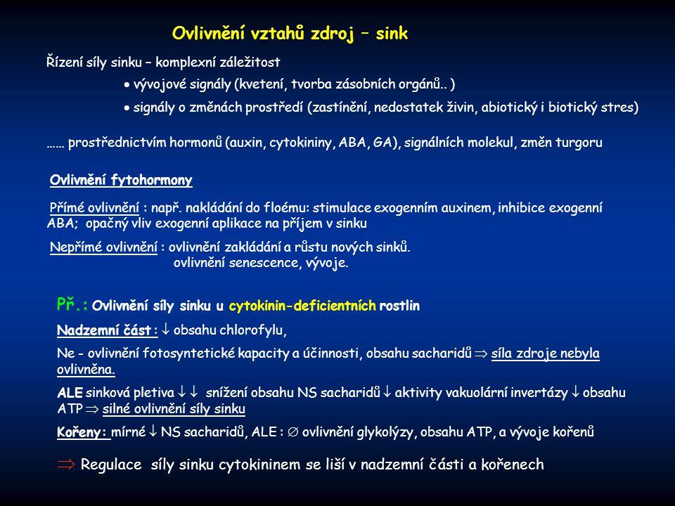 Ovlivnění fytohormony Přímé ovlivnění : např. nakládání do floému: stimulace exogenním auxinem, inhibice exogenní ABA; opačný vliv exogenní aplikace n