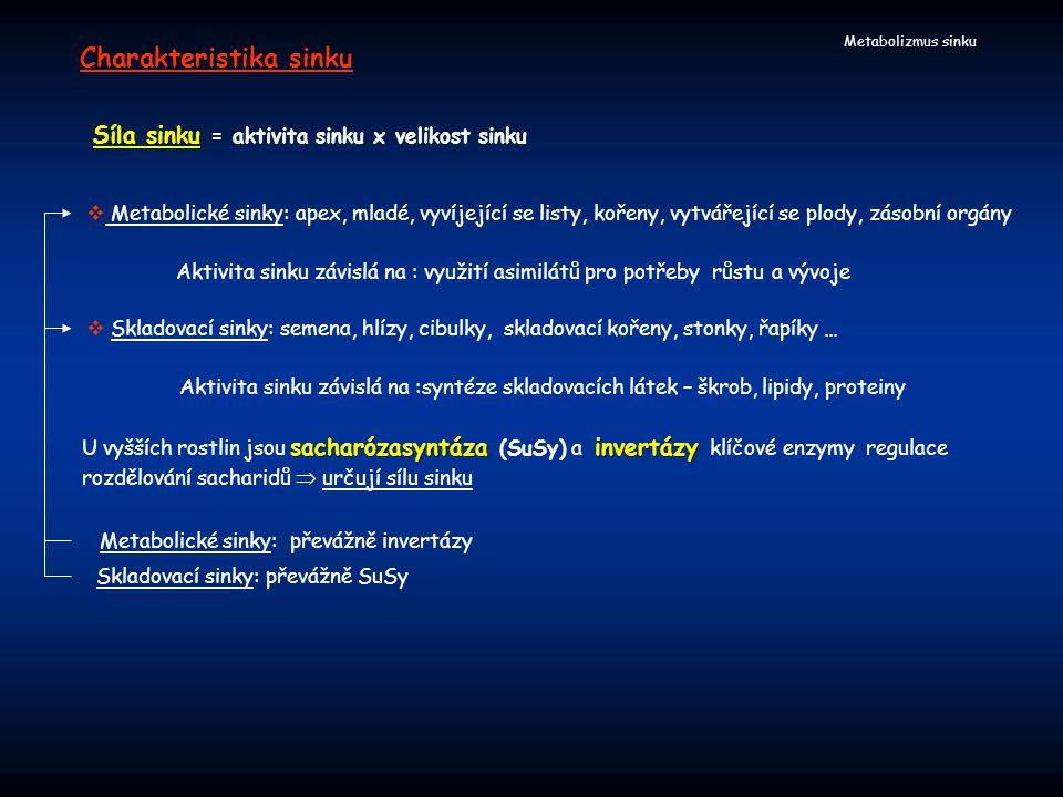Metabolizmus sinku Charakteristika sinku Síla sinku = aktivita sinku x velikost sinku sacharózasyntázainvertázy U vyšších rostlin jsou sacharózasyntáz