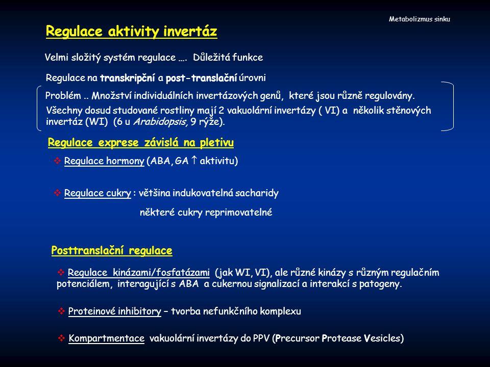 Metabolizmus sinku Velmi složitý systém regulace …. Důležitá funkce Regulace aktivity invertáz Regulace na transkripční a post-translační úrovni  Reg