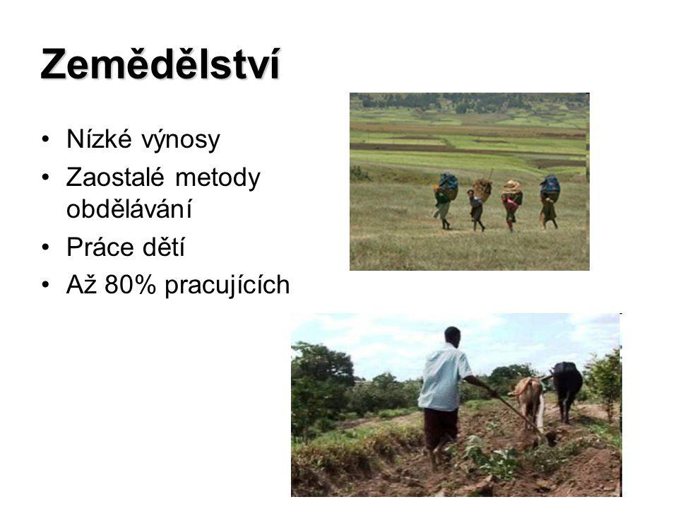 Zemědělství Nízké výnosy Zaostalé metody obdělávání Práce dětí Až 80% pracujících