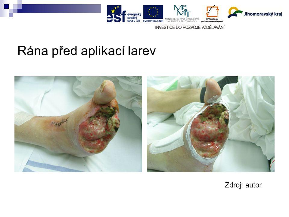 Rána před aplikací larev Zdroj: autor