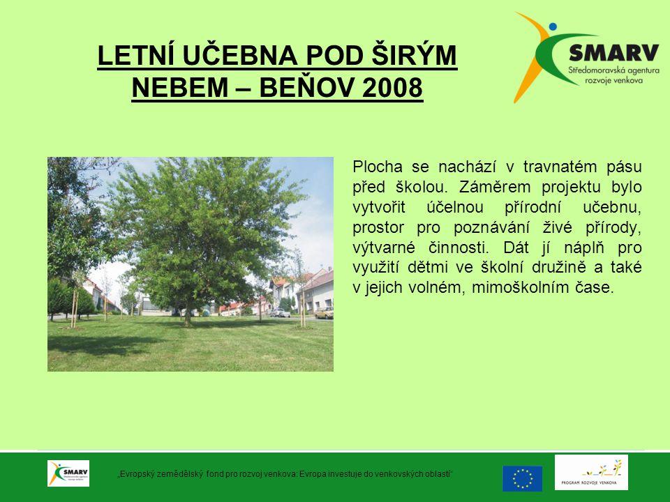 LETNÍ UČEBNA POD ŠIRÝM NEBEM – BEŇOV 2008 Plocha se nachází v travnatém pásu před školou. Záměrem projektu bylo vytvořit účelnou přírodní učebnu, pros