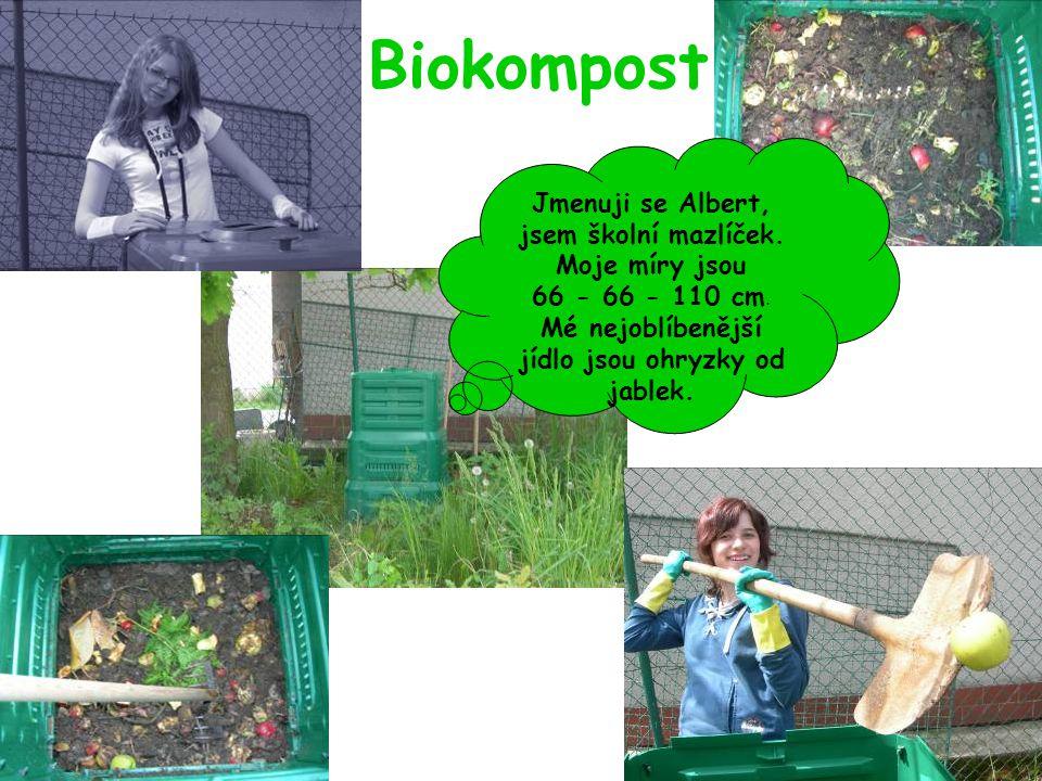 Biokompost Jmenuji se Albert, jsem školní mazlíček. Moje míry jsou 66 - 66 - 110 cm. Mé nejoblíbenější jídlo jsou ohryzky od jablek.