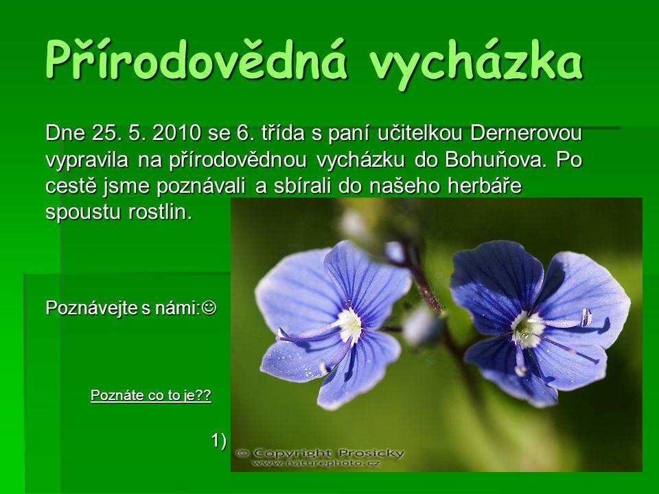 Přírodovědná vycházka Dne 25. 5. 2010 se 6. třída s paní učitelkou Dernerovou vypravila na přírodovědnou vycházku do Bohuňova. Po cestě jsme poznávali