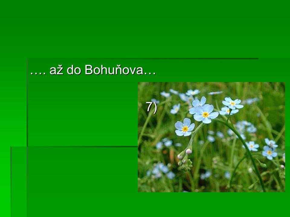 …. až do Bohuňova… 7)