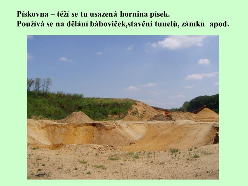 Pískovna – těží se tu usazená hornina písek. Používá se na dělání báboviček,stavění tunelů, zámků apod.