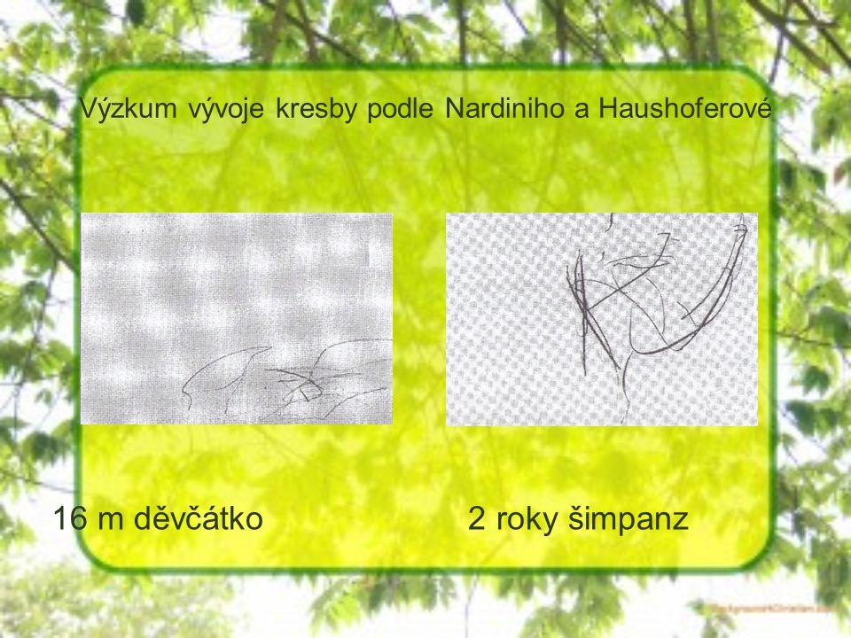Výzkum vývoje kresby podle Nardiniho a Haushoferové 16 m děvčátko 2 roky šimpanz
