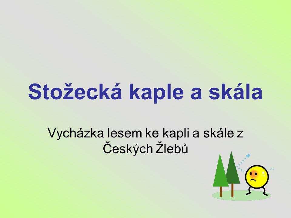 Stožecká kaple a skála Vycházka lesem ke kapli a skále z Českých Žlebů