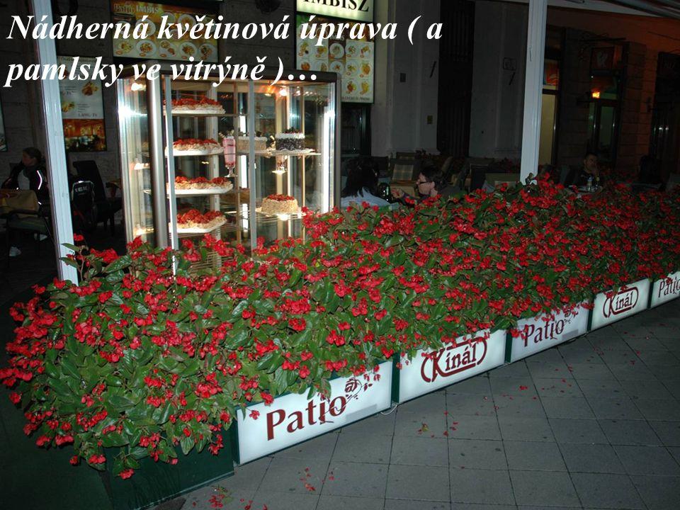Nádherná květinová úprava ( a pamlsky ve vitrýně )…