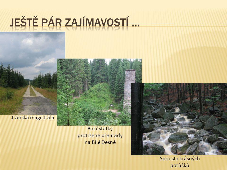 Jizerská magistrála Pozůstatky protržené přehrady na Bílé Desné Spousta krásných potůčků