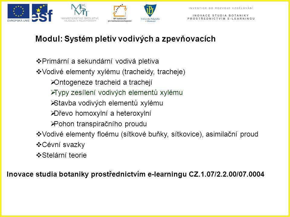 Modul: Systém pletiv vodivých a zpevňovacích  Primární a sekundární vodivá pletiva  Vodivé elementy xylému (tracheidy, tracheje)  Ontogeneze trache