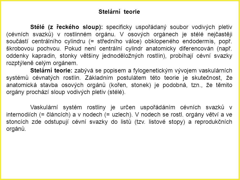 Stelární teorie Stélé (z řeckého sloup): specificky uspořádaný soubor vodivých pletiv (cévních svazků) v rostlinném orgánu. V osových orgánech je stél