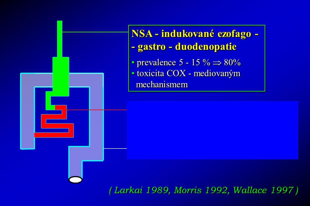 NSA - indukované ezofago - - gastro - duodenopatie prevalence 5 - 15 %  80% toxicita COX - mediovaným mechanismem NSA - indukované ezofago - - gastro - duodenopatie prevalence 5 - 15 %  80% toxicita COX - mediovaným mechanismem NSA - indukované entero-kolopatie prevalence 8 - 20 %  70% toxicita jiným než COX - - mediovaným mechanismem .