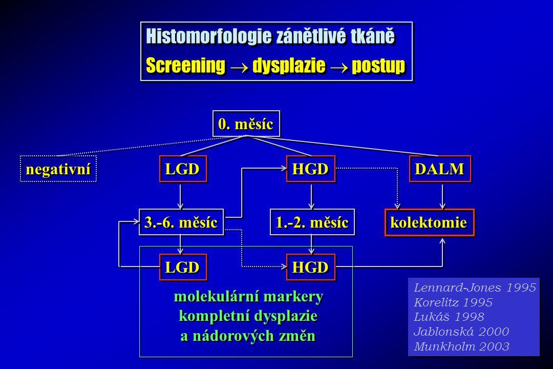 Histomorfologie zánětlivé tkáně Screening  dysplazie  postup Histomorfologie zánětlivé tkáně Screening  dysplazie  postup 0. měsíc negativní LGD H