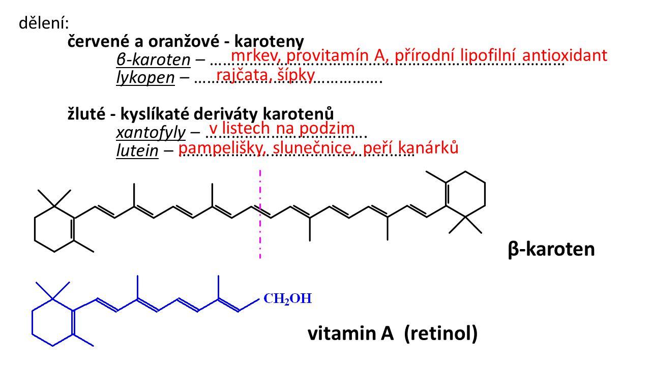 β-karoten vitamin A (retinol) dělení: červené a oranžové - karoteny β-karoten – ……………………………………………………………………… lykopen – ……………………………………. žluté - kyslíkat