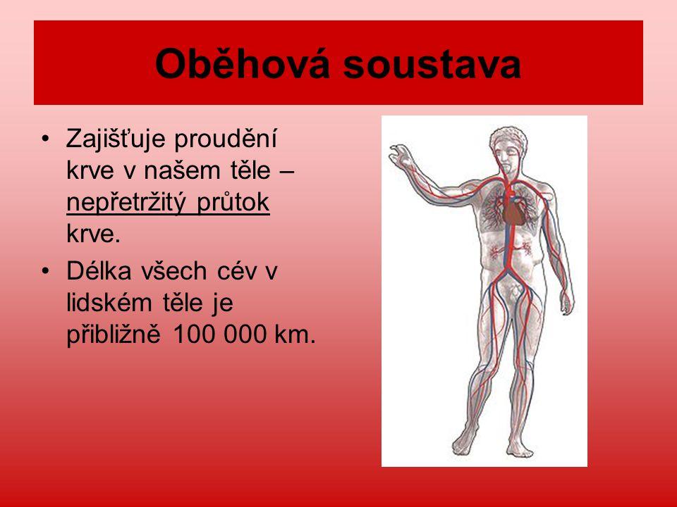 Oběhová soustava Zajišťuje proudění krve v našem těle – nepřetržitý průtok krve. Délka všech cév v lidském těle je přibližně 100 000 km.