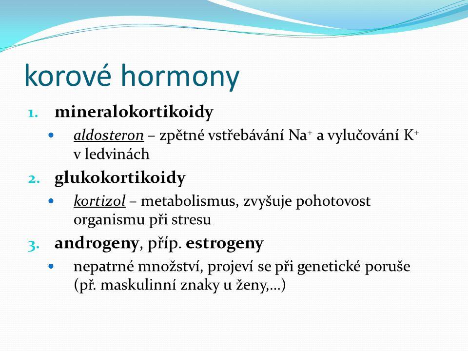 korové hormony 1. mineralokortikoidy aldosteron – zpětné vstřebávání Na + a vylučování K + v ledvinách 2. glukokortikoidy kortizol – metabolismus, zvy