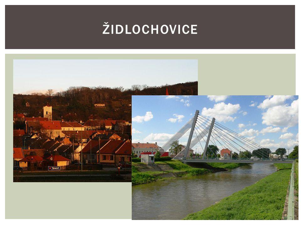HISTORIE:  Město Židlochovice - malebné městečko se nachází jen 20 km jižně od Brna v Dyjskosvrateckém úvalu na soutoku řek Svratky a Litavy (Cézavy) na úpatí svahu kopce Výhonu.