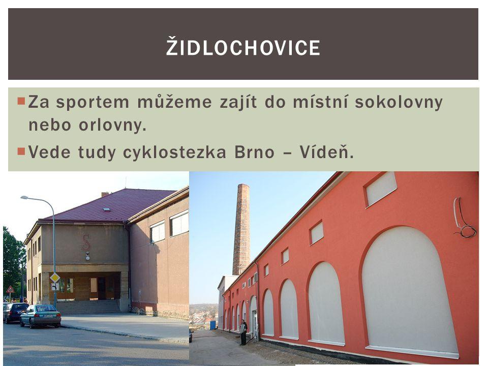  Za sportem můžeme zajít do místní sokolovny nebo orlovny.  Vede tudy cyklostezka Brno – Vídeň. ŽIDLOCHOVICE