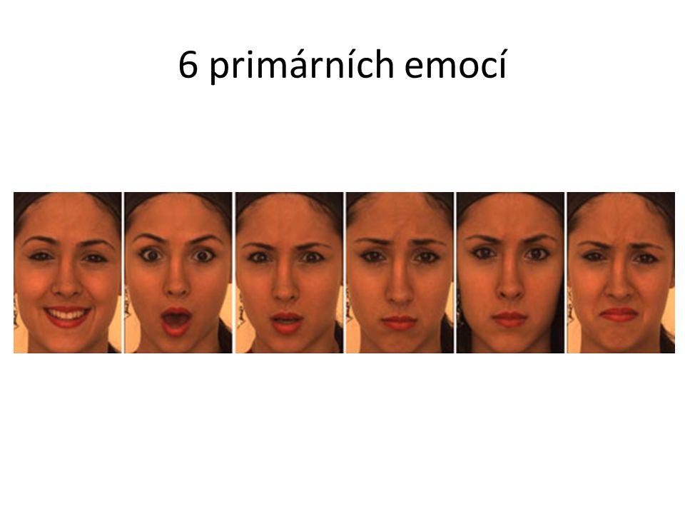 6 primárních emocí