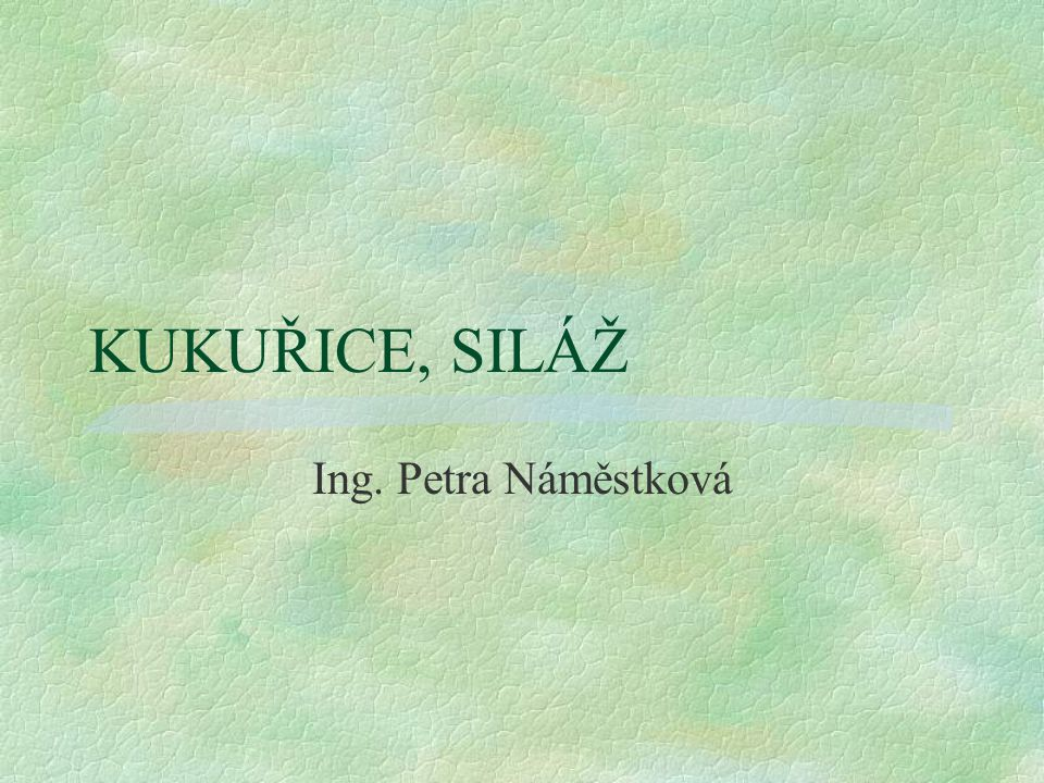 KUKUŘICE, SILÁŽ Ing. Petra Náměstková