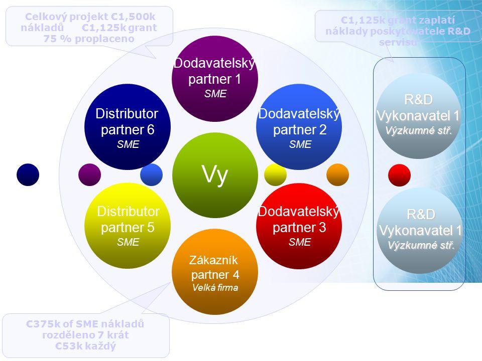 Dodavatelský partner 1 SME Dodavatelský partner 2 SME Dodavatelský partner 3 SME Zákazník partner 4 Velká firma Distributor partner 6 SME Distributor
