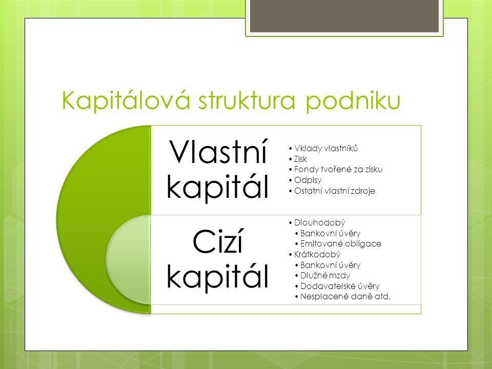 Kapitálová struktura podniku Vlastní kapitál Cizí kapitál Vklady vlastníků Zisk Fondy tvořené za zisku Odpisy Ostatní vlastní zdroje Dlouhodobý Bankov