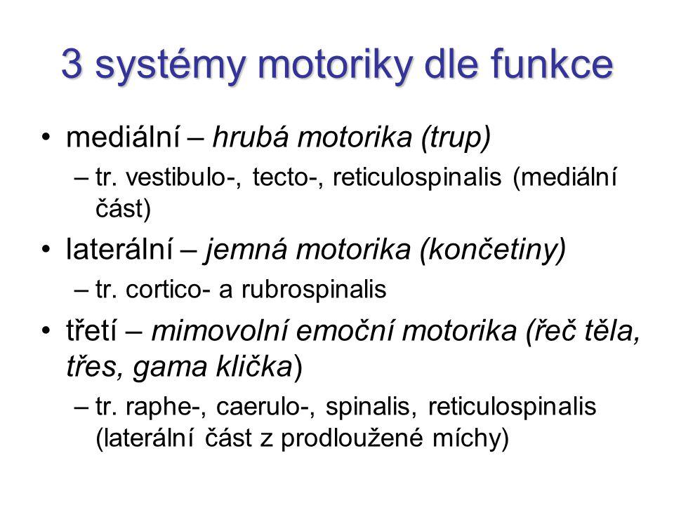 3 systémy motoriky dle funkce mediální – hrubá motorika (trup) –tr. vestibulo-, tecto-, reticulospinalis (mediální část) laterální – jemná motorika (k