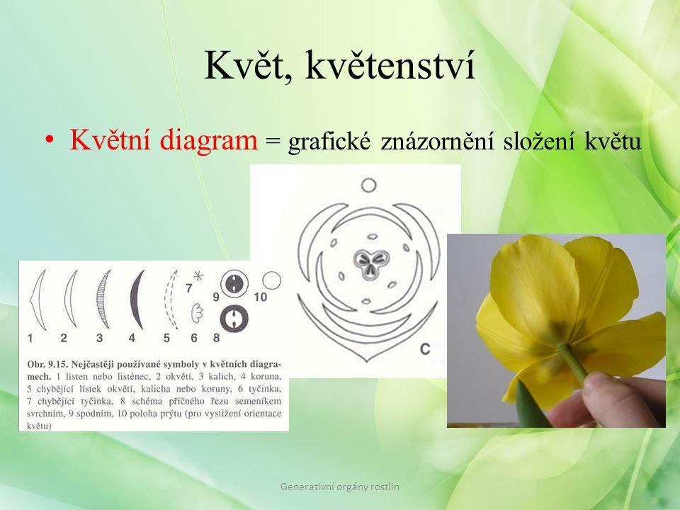 Květ, květenství Květní diagram = grafické znázornění složení květu Generativní orgány rostlin