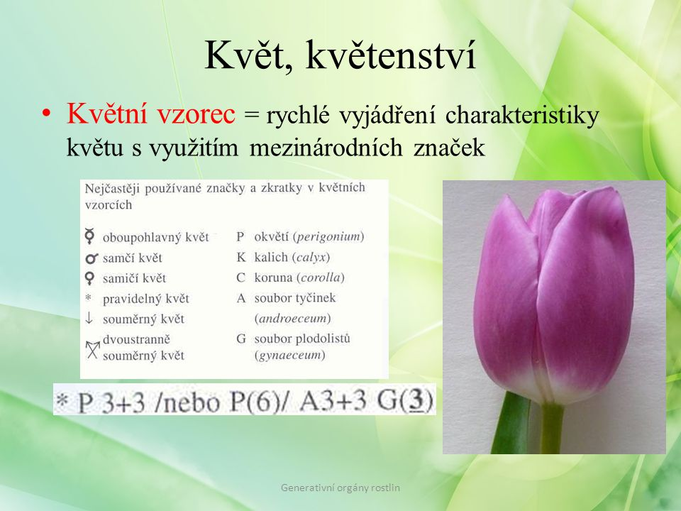Květ, květenství Květní vzorec = rychlé vyjádření charakteristiky květu s využitím mezinárodních značek Generativní orgány rostlin