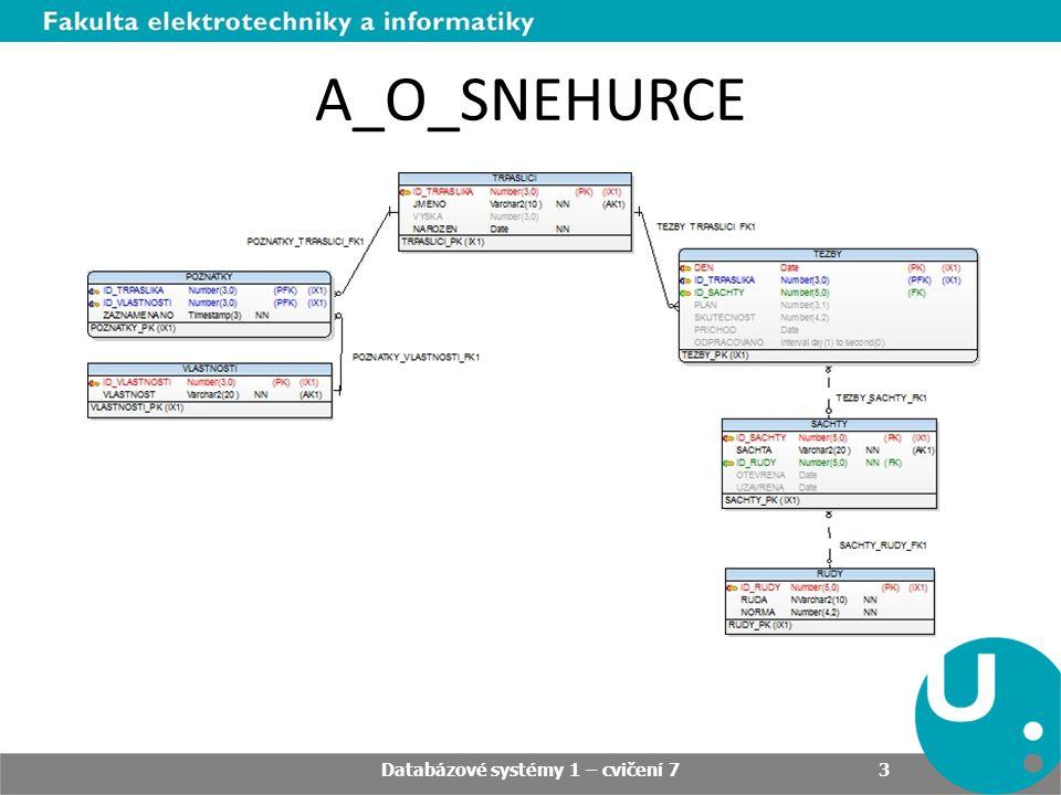 A_O_SNEHURCE Databázové systémy 1 – cvičení 7 3
