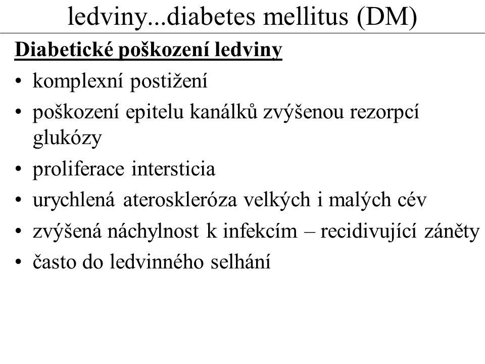 ledviny...diabetes mellitus (DM) Diabetické poškození ledviny komplexní postižení poškození epitelu kanálků zvýšenou rezorpcí glukózy proliferace intersticia urychlená ateroskleróza velkých i malých cév zvýšená náchylnost k infekcím – recidivující záněty často do ledvinného selhání