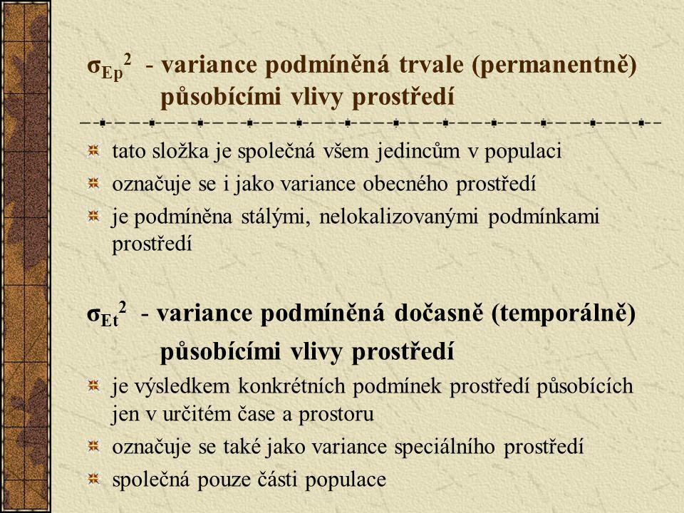 σ Ep 2 - variance podmíněná trvale (permanentně) působícími vlivy prostředí tato složka je společná všem jedincům v populaci označuje se i jako variance obecného prostředí je podmíněna stálými, nelokalizovanými podmínkami prostředí σ Et 2 - variance podmíněná dočasně (temporálně) působícími vlivy prostředí je výsledkem konkrétních podmínek prostředí působících jen v určitém čase a prostoru označuje se také jako variance speciálního prostředí společná pouze části populace