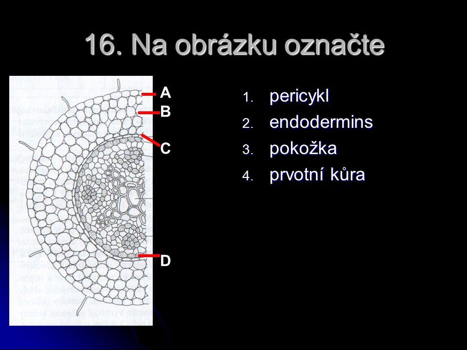 15. Epifyt je a. rostlina žijící na povrchu jiné rostliny, zpravidla stromu, avšak živící se samostatně, neparazitující (bromélie) b. rostlina žijící