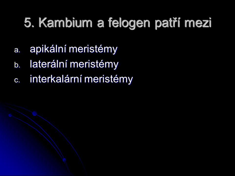 5.Kambium a felogen patří mezi a. apikální meristémy b.