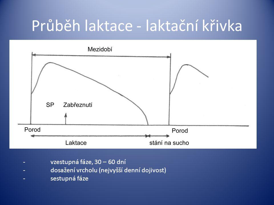 Průběh laktace - laktační křivka -vzestupná fáze, 30 – 60 dní -dosažení vrcholu (nejvyšší denní dojivost) -sestupná fáze