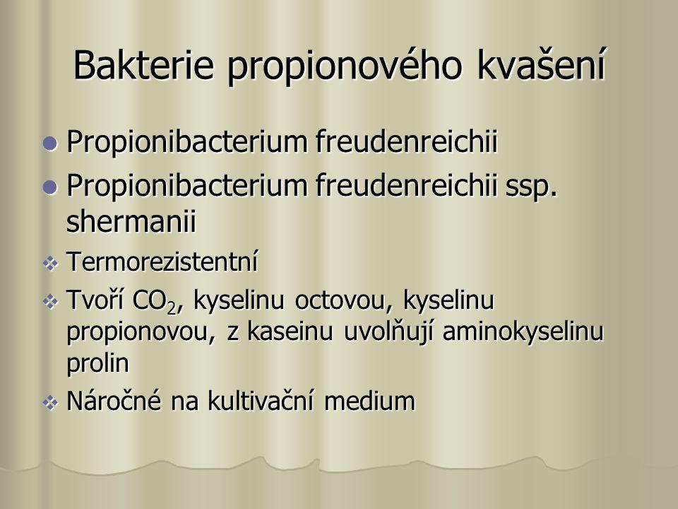Bakterie propionového kvašení Propionibacterium freudenreichii Propionibacterium freudenreichii Propionibacterium freudenreichii ssp.