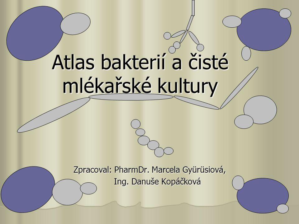 Atlas bakterií a čisté mlékařské kultury Zpracoval: PharmDr.