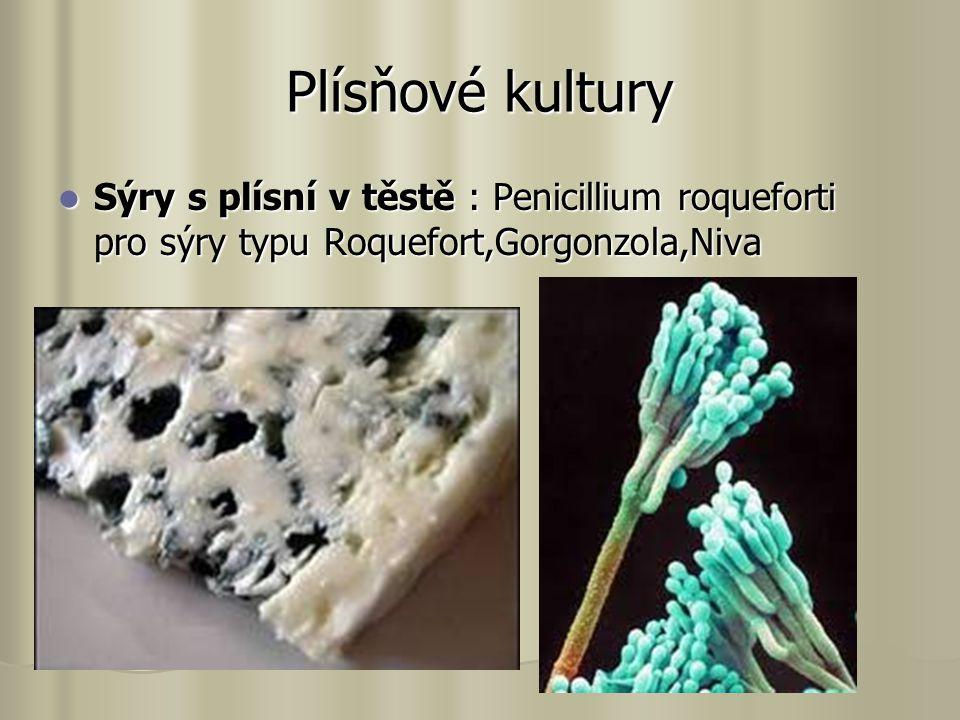 Plísňové kultury Sýry s plísní v těstě : Penicillium roqueforti pro sýry typu Roquefort,Gorgonzola,Niva Sýry s plísní v těstě : Penicillium roqueforti pro sýry typu Roquefort,Gorgonzola,Niva