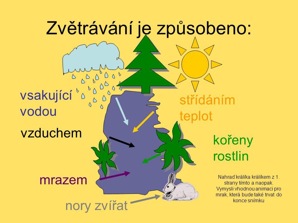 Zvětrávání je způsobeno: vsakující vodou střídáním teplot vzduchem kořeny rostlin mrazem nory zvířat Nahraď králíka králíkem z 1. strany tímto a naopa