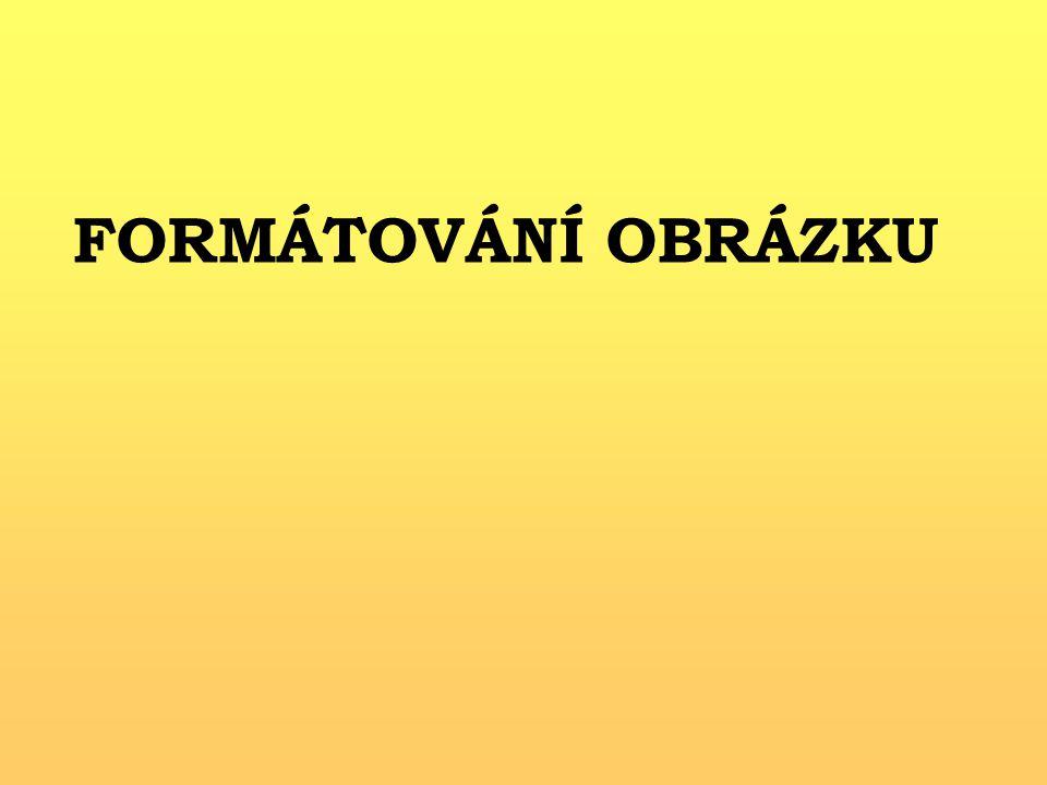 FORMÁTOVÁNÍ OBRÁZKU