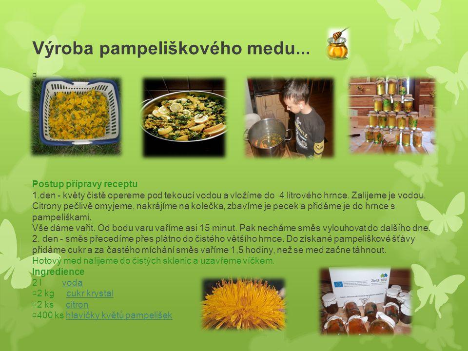 Výroba pampeliškového medu...