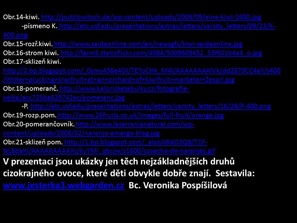 Obr.14-kiwi. http://putzlowitsch.de/wp-content/uploads/2009/09/eine-kiwi-1600.jpg http://putzlowitsch.de/wp-content/uploads/2009/09/eine-kiwi-1600.jpg