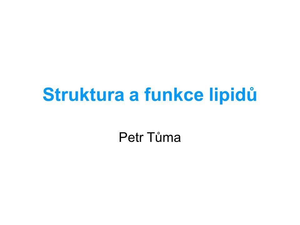 Struktura a funkce lipidů Petr Tůma