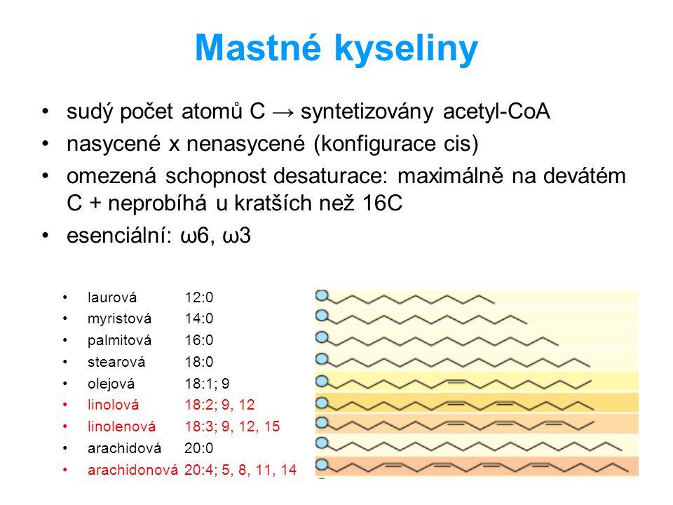 Mastné kyseliny sudý počet atomů C → syntetizovány acetyl-CoA nasycené x nenasycené (konfigurace cis) omezená schopnost desaturace: maximálně na devát